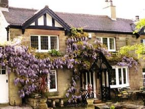 The  Pines dog-friendly B and B Matlock Derbyshire pets allowed